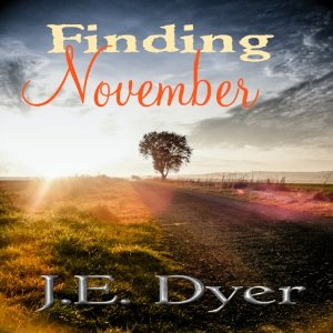 Finding Novermber by JE Dyer audiobook cover image
