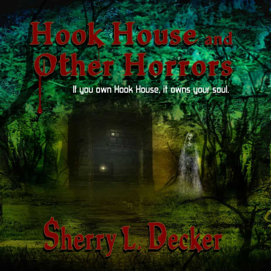 Hook House and Other Horrors by Sherry L Decker audiobook cover image